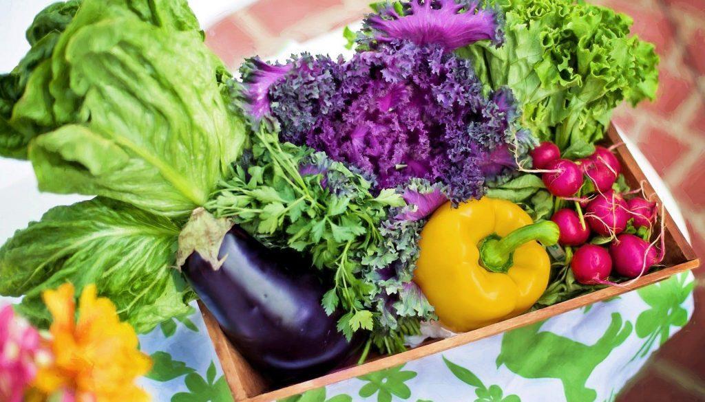 vegetables-790022_1920 (1)